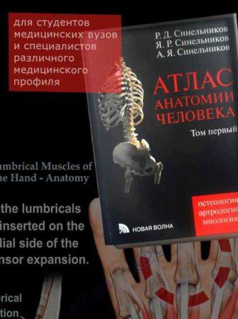синельников атлас анатомии человека Фолиант книжный